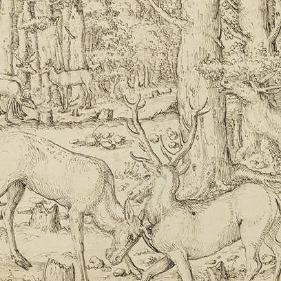 Hunting during the Renaissance Era